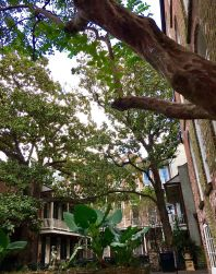 Courtyard at our hotel