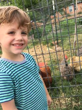 Jack likes the chickens near our house