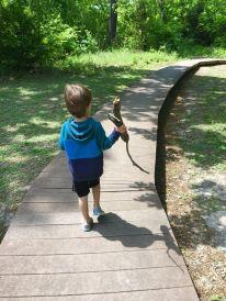 Carrying sticks