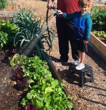 Helping Grandpa water the garden