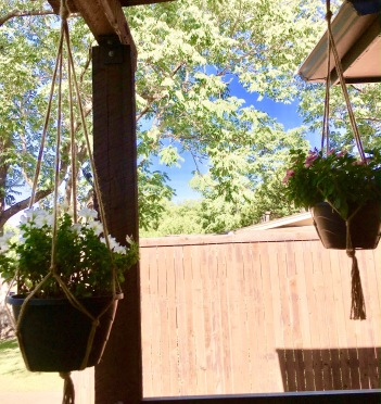 Macrame plant holders from Mom